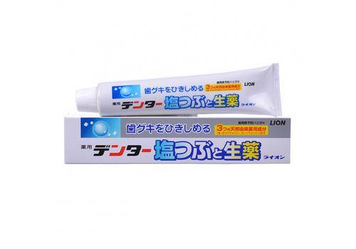 Лечебно-профилактическая зубная паста для укрепления десен Dental, Lion 180 г, фото